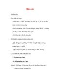 Giáo án môn Toán lớp 7 : Tên bài dạy : Biểu đồ