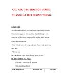 Giáo án môn Toán lớp 7 : Tên bài dạy : CÁC GÓC TẠO BỞI MỘT ĐƯỜNG THẲNG CẮT HAI ĐƯỜNG THẲNG