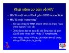 Bài giảng điều trị HIV : SINH BỆNH HỌC VÀ DIỄN BIẾN TỰ NHIÊN CỦA NHIỄM HIV part 2