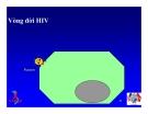 Bài giảng điều trị HIV : SINH BỆNH HỌC VÀ DIỄN BIẾN TỰ NHIÊN CỦA NHIỄM HIV part 3