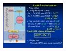 Bài giảng chuyển hóa các chất - Chuyển Hóa Lipid part 5