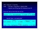 Bài giảng chuyển hóa các chất - Chuyển Hóa Lipid part 7