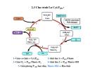 Bài giảng chuyển hóa các chất - Chuyển hóa Xenobiotic part 3