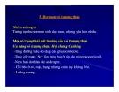 Bài giảng sinh hóa -Hóa sinh Hormon part 10