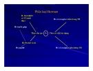 Bài giảng sinh hóa -Hóa sinh Hormon part 3