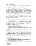 Giáo trình phân tích quy trình ứng dụng nguyên lý thuế nhập siêu của một giao dịch trong kết toán p6