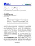 "Báo cáo sinh học: "" A bridge to transcription by RNA polymerase"""