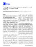 "Báo cáo sinh học: ""Forward genetics in Tribolium castaneum: opening new avenues of research in arthropod biology"""