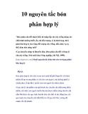 10 nguyên tắc bón phân hợp lý cho cây trồng