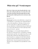 Phân trùn quế -Vermicompost