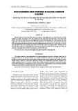 """Báo cáo nông nghiệp:"""" Ảnh hưởng của cấu trúc rừng ngập mặn đến quy luật giảm chiều cao sóng biển ở Việt Nam"""""""