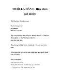 MUỖI LÁ HÀNH - Rice stem gall midge