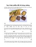 Top 6 thực phẩm đẩy lùi loãng xương