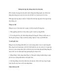 Những bài tập nhẹ nhàng dành cho thai phụ