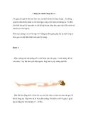 4 động tác dành riêng cho eo