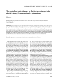 """Báo cáo lâm nghiệp: """"The root-plant ratio changes in the first growing periods of wild cherry (Prunus avium L.) plantations"""""""