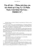 """BẢN TÓM TẮT  Tên đề tài: : """"Phân tích báo cáo tài chính tại Công Ty Cổ Phần Nước Giải Khát Sài Gòn – TRIBECO""""."""