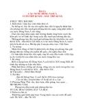 Giáo án Lịch Sử 8: Bài 11: CÁC NƯỚC ĐÔNG NAM Á CUỐI THẾ KỈ XIX – ĐẦU THẾ KỈ XX