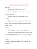Giáo án Công Dân lớp 8: LAO ĐỘNG TỰ GIÁC VÀ SÁNG TẠO  (Tiết 2)