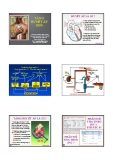 Bài giảng Tăng huyết áp - ThS. BS. Nguyễn Ngọc Quang