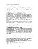 Bài giảng kháng sinh part 3