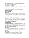 Bài giảng kháng sinh part 4