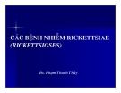 Bài giảng Các bệnh nhiễm rickettsiae (rickettsioses) part 1