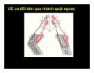 Bài giảng chức năng điều tiết vận động của hệ thần kinh trung ương part 2