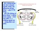 Bài giảng thần kinh thính giác part 4