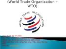 Tổ chức thương mại thế giới ITO