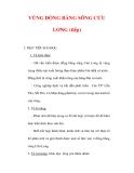 Giáo án Địa lý lớp 9 : Tên bài dạy : VÙNG ĐỒNG BẰNG SÔNG CỬU LONG (tiếp)