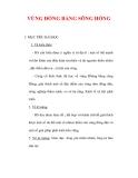 Giáo án Địa lý lớp 9 : Tên bài dạy : VÙNG ĐỒNG BẰNG SÔNG HỒNG