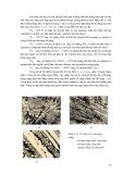 Giáo trình vật liệu kỹ thuật xây dựng part 3