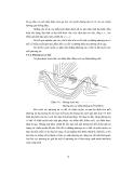 Khảo sát và thiết kế đường sắt part 7