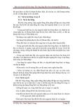 Báo cáo chuyên đề thi công: Thi công tầng hầm theo phương pháp Bottom up part 10