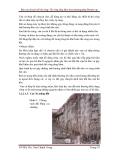 Báo cáo chuyên đề thi công: Thi công tầng hầm theo phương pháp Bottom up part 3