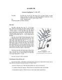 Tài liệu về kỹ thuật trồng, đặc điểm sinh lý và phân bố của cây Sa Nhân tím