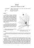 Tài liệu về kỹ thuật trồng, đặc điểm sinh lý và phân bố của cây Sến Mật