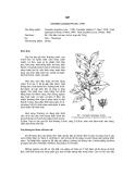 Tài liệu về kỹ thuật trồng, đặc điểm sinh lý và phân bố của cây Sở
