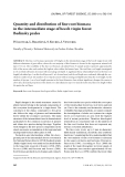 """Báo cáo lâm nghiệp: """"Quantity and distribution of fine root biomass in the intermediate stage of beech virgin forest Badínsky prales"""""""