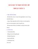 Giáo án Mỹ thuật lớp 9 : Tên bài dạy : SƠ LƯỢC VỀ MỘT SỐ NỀN MĨ THUẬT CHÂU Á