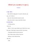 Giáo án Mỹ thuật lớp 9 : Tên bài dạy : TĨNH VẬT ( LỌ HOA VÀ QUẢ ) VẼ MÀU