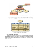Giáo trình phân tích quy trình ứng dụng cấu tạo giao thức phân giải địa chỉ ngược RARP p10