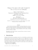 """Báo cáo toán học: """"Tilings of the sphere with right triangles II: The (1, 3, 2), (0, 2, n) subfamily"""""""