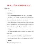 Giáo án Hóa học lớp 9 : Tên bài dạy : SILIC - CÔNG NGHIỆP SILICAT