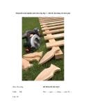 Sáng kiến kinh nghiệm môn thủ công lớp 1 – bài cắt, dán hàng rào đơn giản