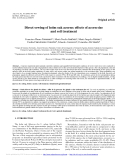 """Báo cáo lâm nghiệp: """"Direct sowing of holm oak acorns: effects of acorn size and soil treatment"""""""