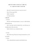 MỘT SỐ VẤN ĐỀ CỦA CHÂU LỤC VÀ KHU VỰC - Tiết 1