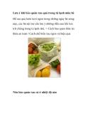 Lưu ý khi bảo quản rau quả trong tủ lạnh mùa hè