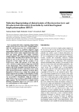 """Báo cáo khoa học: """" Molecular fingerprinting of clinical isolates of Mycobacterium bovis and Mycobacterium tuberculosis from India by restriction fragment length polymorphism (RFLP)"""""""